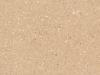 Acorn  Corian Color Sample