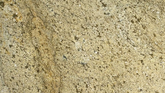 Cupa Gold Granite Color Sample
