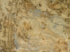 Golden Wave Granite Color Sample