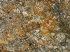Mascarello Granite Color Sample