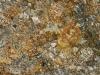 Mascarello Granite Color Sample